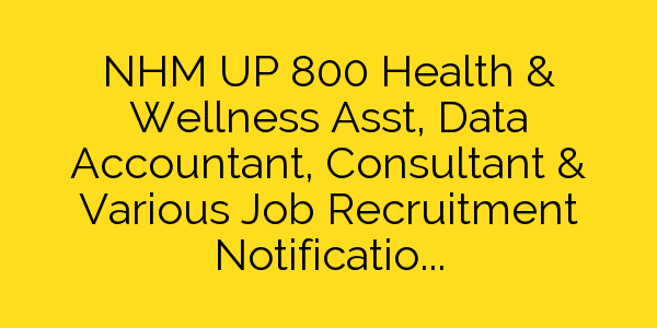 NHM UP 800 Health & Wellness Asst, Data Accountant, Consultant & Various Job Recruitment Notification